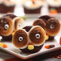 Hooty Marshmallow Chocolate Cupcakes