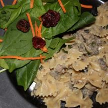 Remixed Turkey Stroganoff